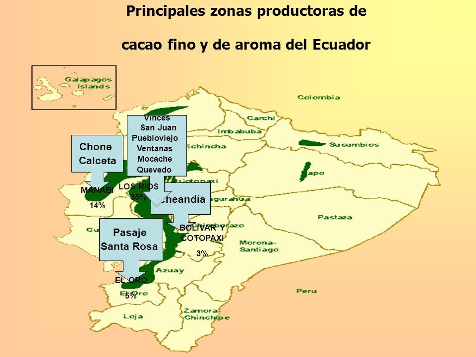 Principales zonas productoras de cacao fino y de aroma del Ecuador Chone Calceta Pasaje Santa Rosa Echeandía Vinces San Juan Puebloviejo Ventanas Moca