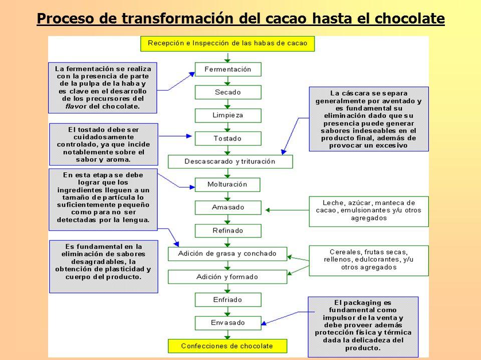 Estructura de Gobierno en Procesos de Internacionalización y estrategias de Ecuacocoa Elección de su estructura de Gobierno.