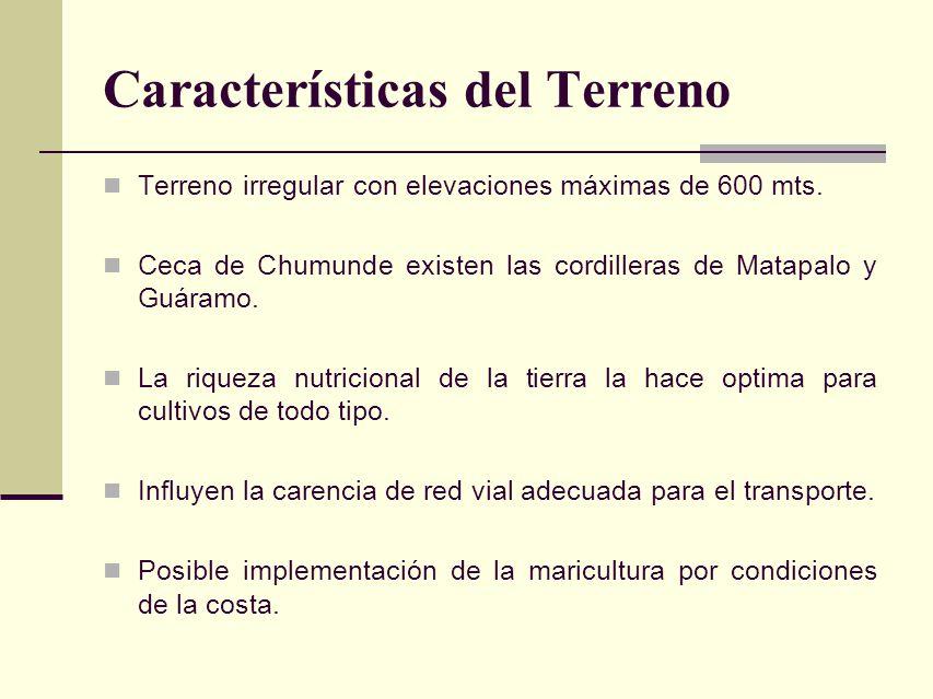Características del Terreno Terreno irregular con elevaciones máximas de 600 mts. Ceca de Chumunde existen las cordilleras de Matapalo y Guáramo. La r