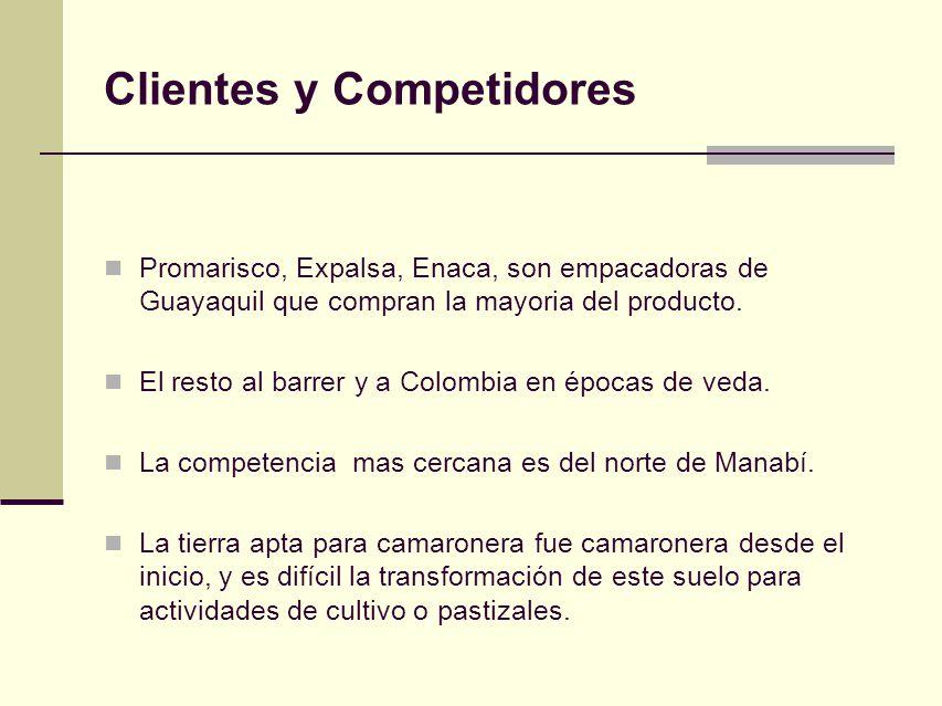 Clientes y Competidores Promarisco, Expalsa, Enaca, son empacadoras de Guayaquil que compran la mayoria del producto. El resto al barrer y a Colombia