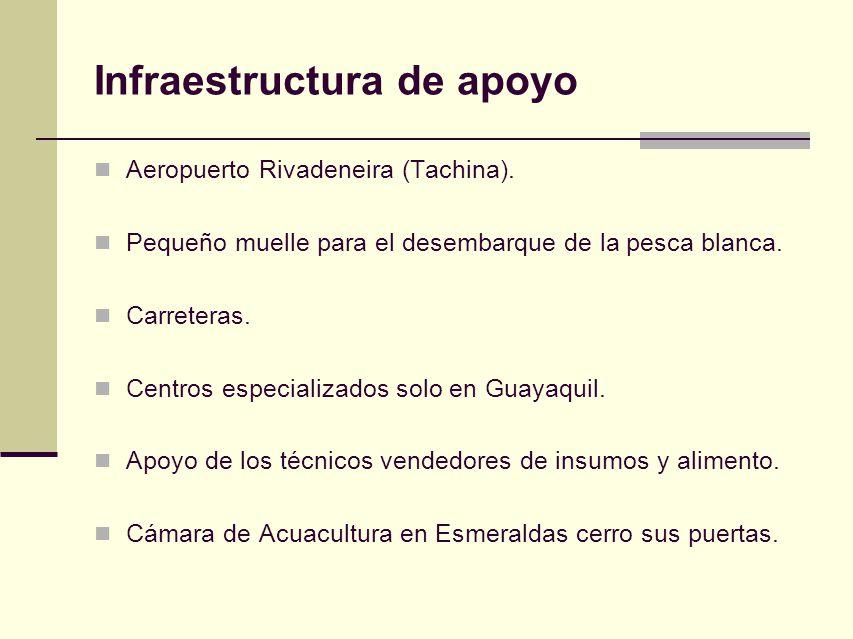 Infraestructura de apoyo Aeropuerto Rivadeneira (Tachina). Pequeño muelle para el desembarque de la pesca blanca. Carreteras. Centros especializados s