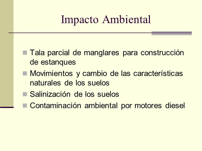 Impacto Ambiental Tala parcial de manglares para construcción de estanques Movimientos y cambio de las características naturales de los suelos Saliniz