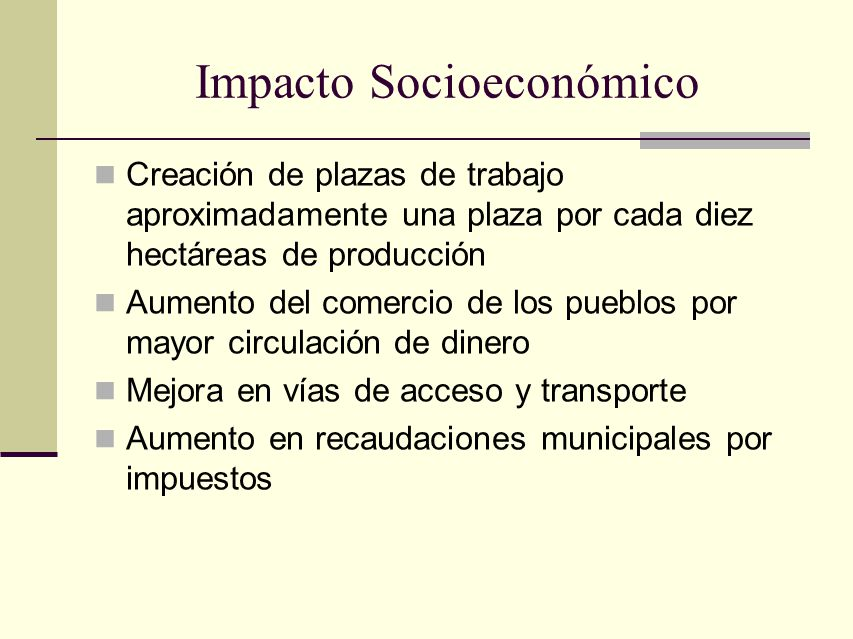 Impacto Socioeconómico Creación de plazas de trabajo aproximadamente una plaza por cada diez hectáreas de producción Aumento del comercio de los puebl