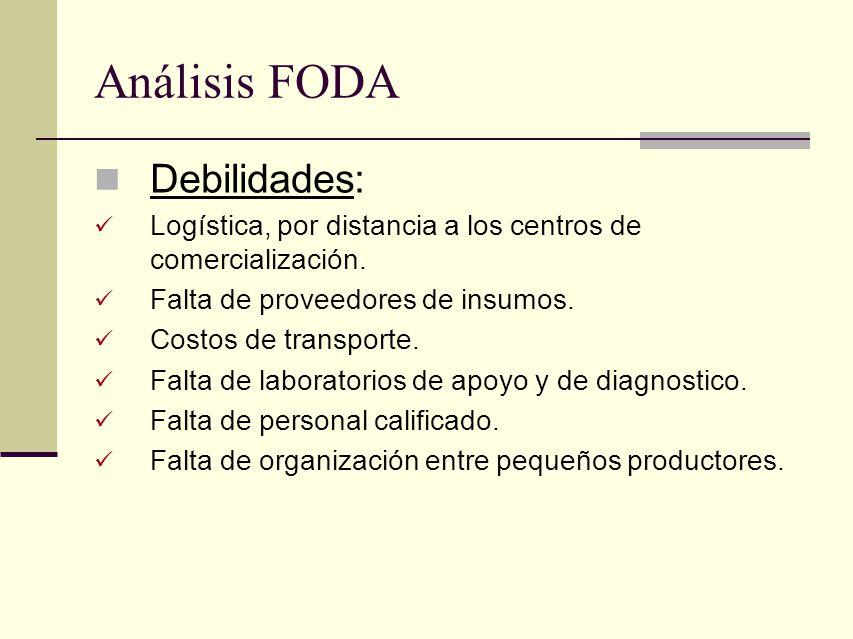 Análisis FODA Debilidades: Logística, por distancia a los centros de comercialización. Falta de proveedores de insumos. Costos de transporte. Falta de