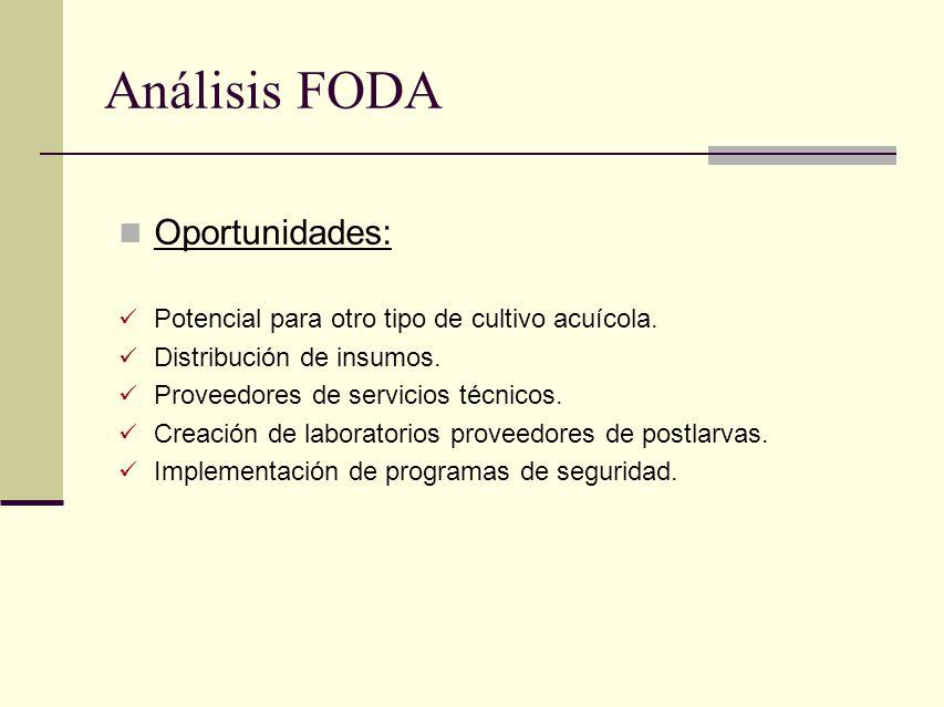 Análisis FODA Oportunidades: Potencial para otro tipo de cultivo acuícola. Distribución de insumos. Proveedores de servicios técnicos. Creación de lab