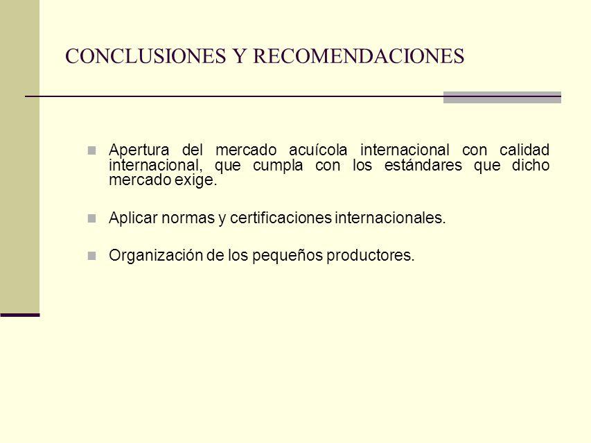 CONCLUSIONES Y RECOMENDACIONES Apertura del mercado acuícola internacional con calidad internacional, que cumpla con los estándares que dicho mercado