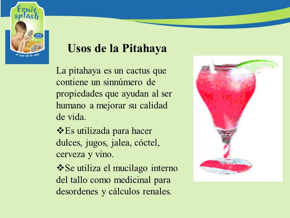 Usos de la Pitahaya La pitahaya es un cactus que contiene un sinnúmero de propiedades que ayudan al ser humano a mejorar su calidad de vida. Es utiliz