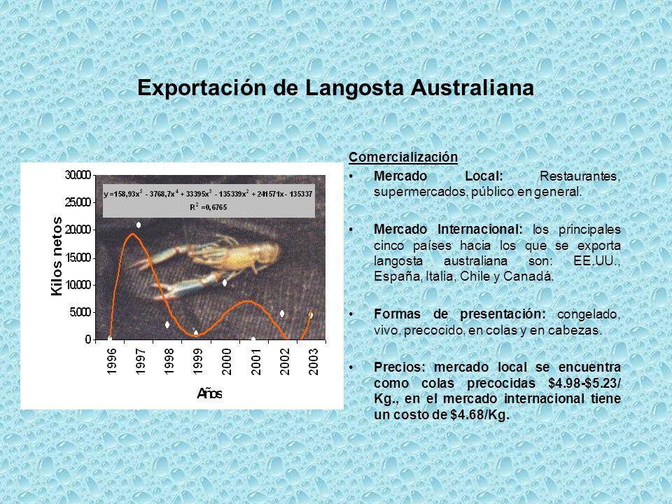 Exportación de Langosta Australiana Comercialización Mercado Local: Restaurantes, supermercados, público en general. Mercado Internacional: los princi