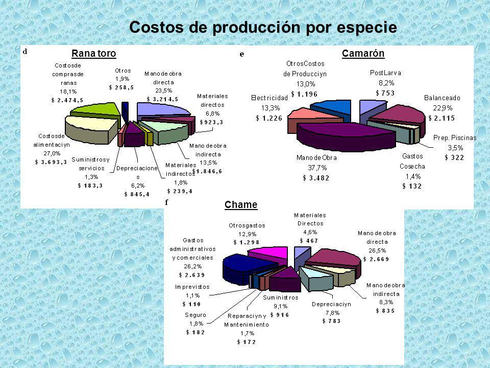 Costos de producción por especie Rana toroCamarón Chame