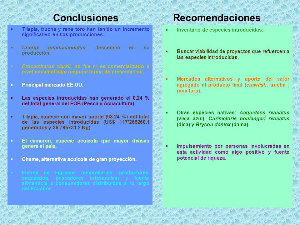 ConclusionesRecomendaciones Tilapia, trucha y rana toro han tenido un incremento significativo en sus producciones. Cherax quadricarinatus, descendió
