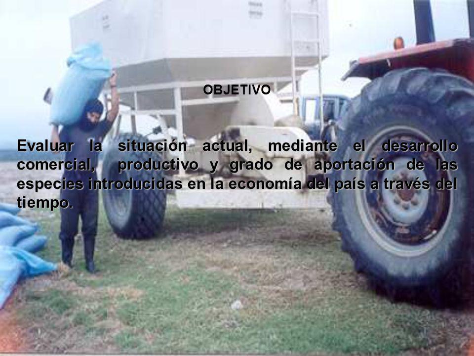 Exportación de Rana toro Comercialización Mercado Local: restaurantes especializados (gourtmet).
