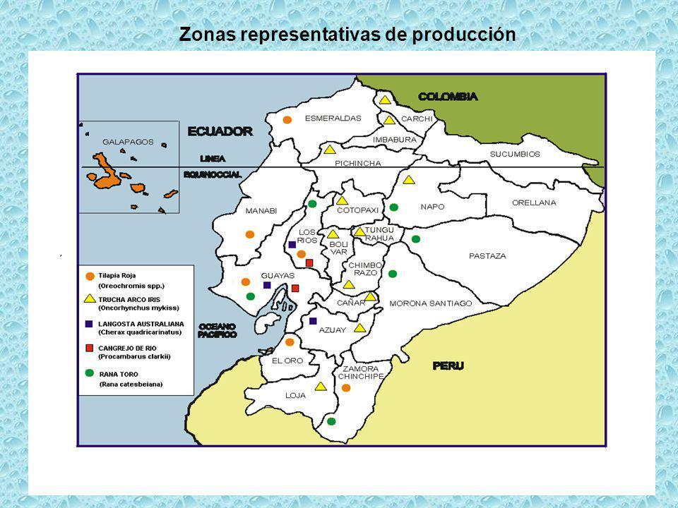 Zonas representativas de producción
