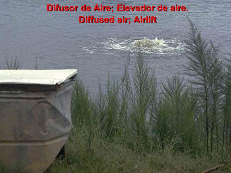 Difusor de Aire; Elevador de aire. Diffused air; Airlift