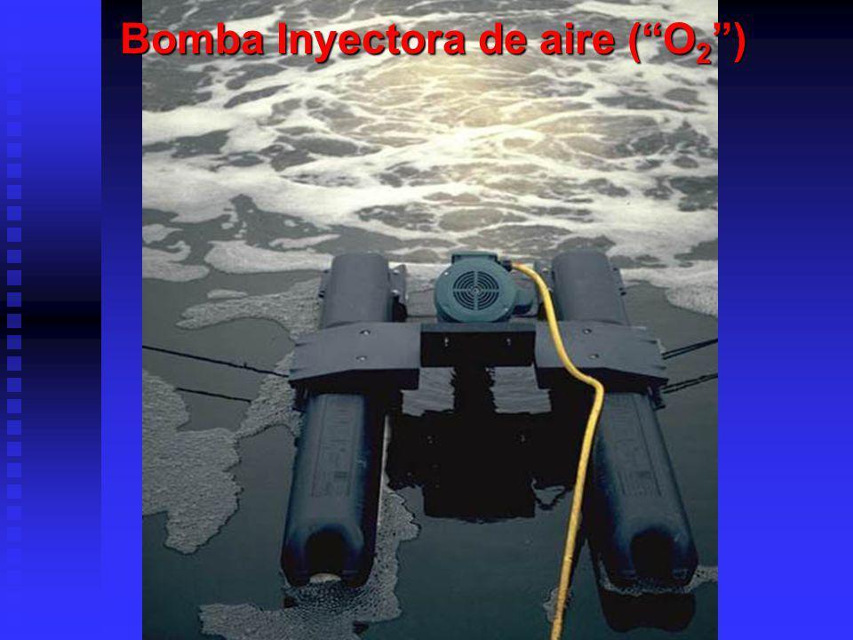 Bomba Inyectora de aire (O 2 )