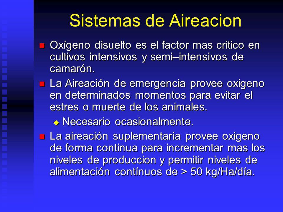 Aireación: Funciones 1.Añade O 2 al agua: a. Camarón usa <20% O 2.