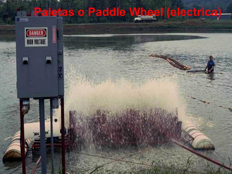 Paletas o Paddle Wheel (electrica)