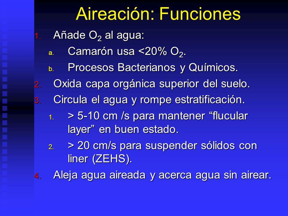 Aireación: Funciones 5.Evita compuestos reducidos (NH 4, H 2 S,etc).