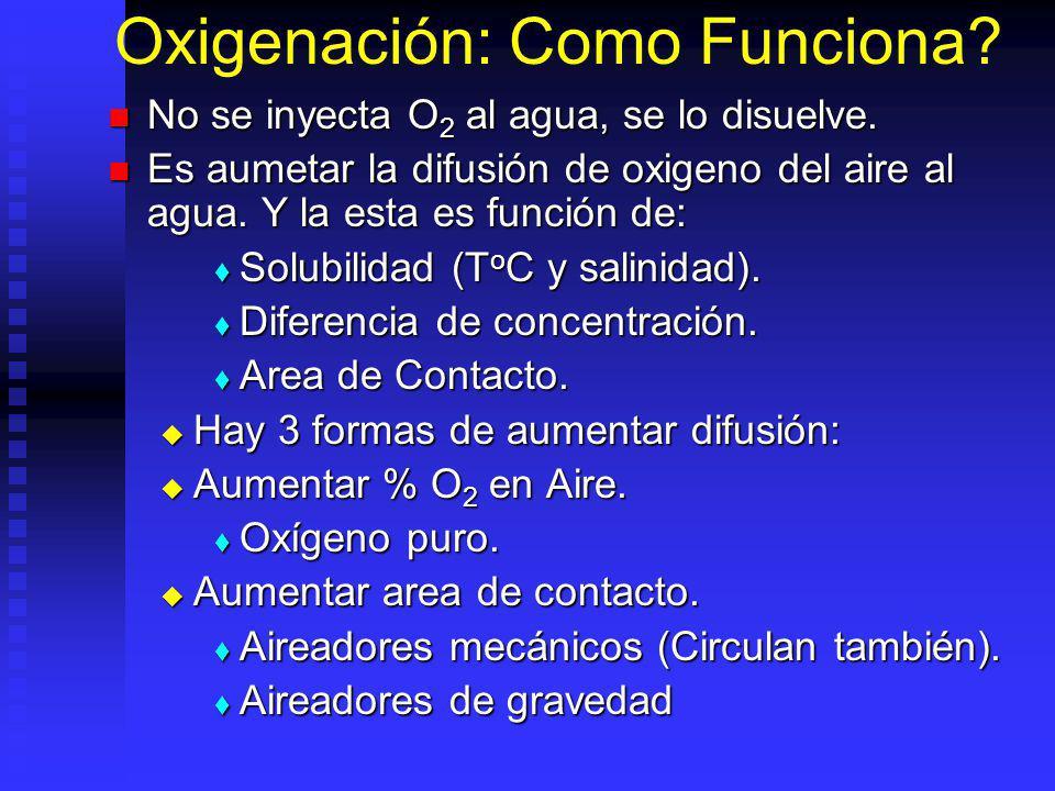 Oxigenación: Como Funciona.No se inyecta O 2 al agua, se lo disuelve.