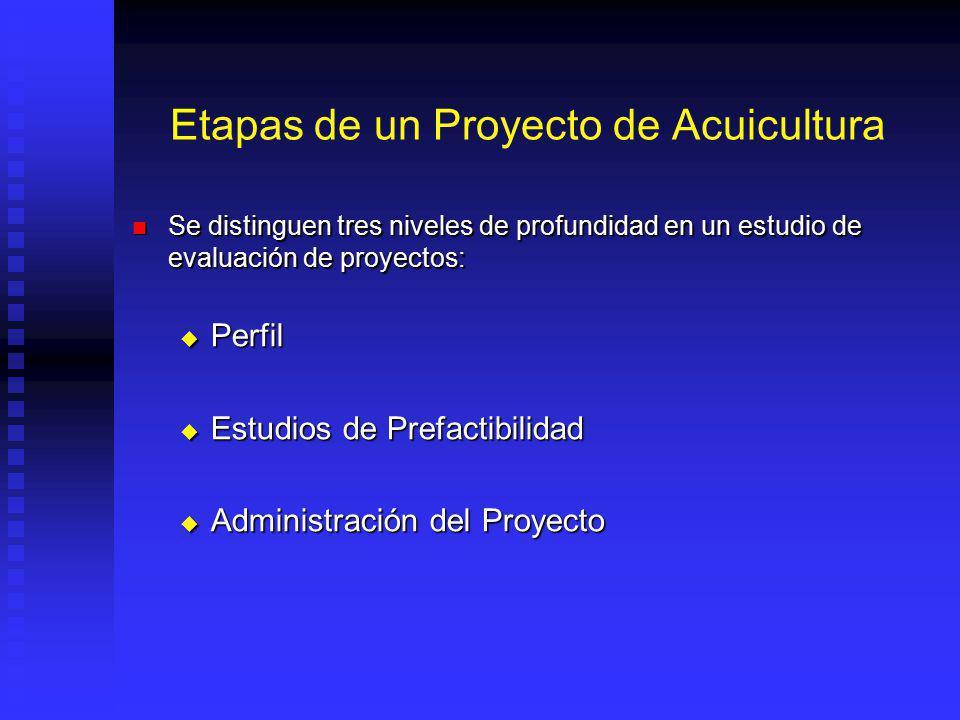 Características de los Proyectos Se dan hacia futuro Se dan en ambientes cambiantes Se plantean generalmente a largo plazo Sus efectos son duraderos e