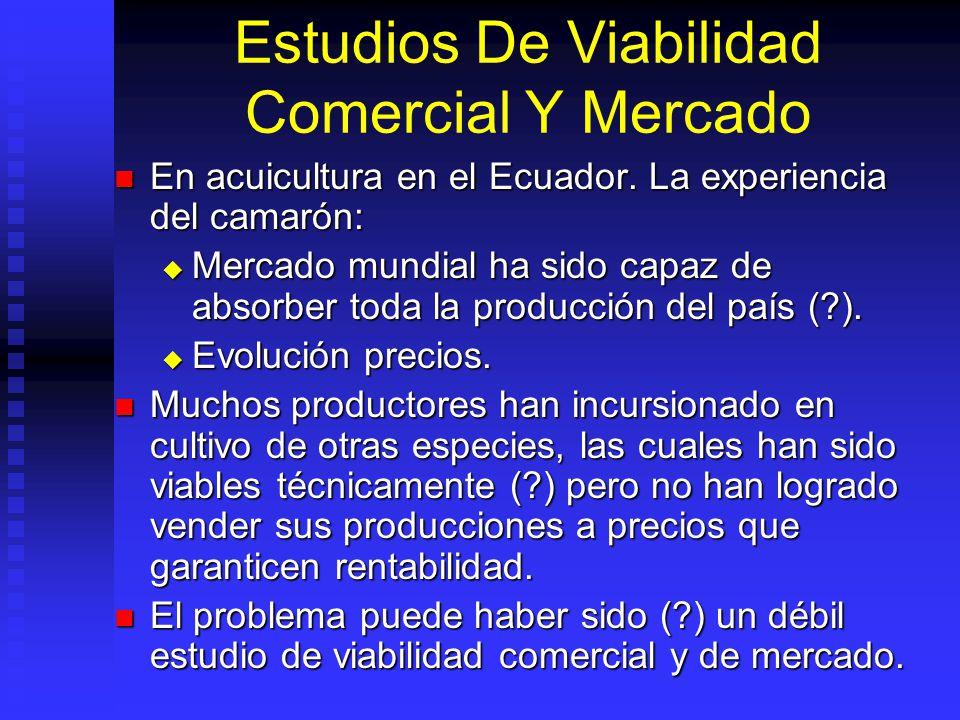 Estudios De Viabilidad Comercial Y Mercado Indicará si mercado apetece bien o servicio. Indicará si mercado apetece bien o servicio. Cuantifica volúme