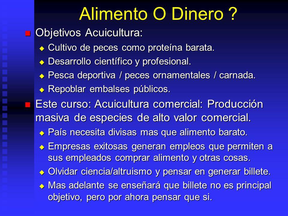 Características Comunes: Características Comunes: Ecología acuática y alto contenido (60- 80%) agua.