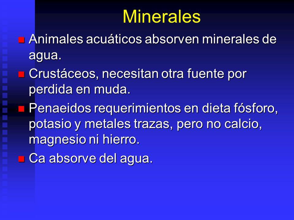Vitaminas Microelementos necesarios para regulación en animales: Microelementos necesarios para regulación en animales: Algunas pueden ser sintetizada
