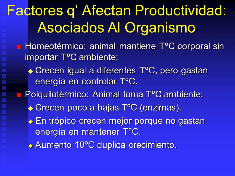 Piramide Alimenticia Carnivoro Herbivoro Algas 7 lb de Herbivoro = 1 lb Carnivoro 3 lb de algas = 1 lb.