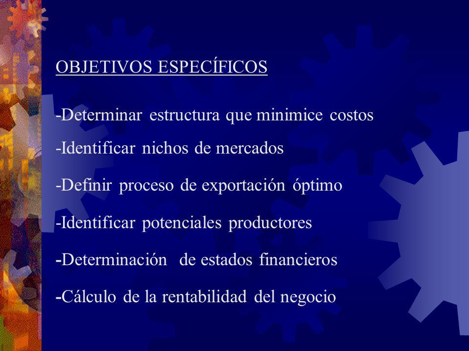 OBJETIVOS ESPECÍFICOS -Determinar estructura que minimice costos -Identificar nichos de mercados -Definir proceso de exportación óptimo -Identificar p