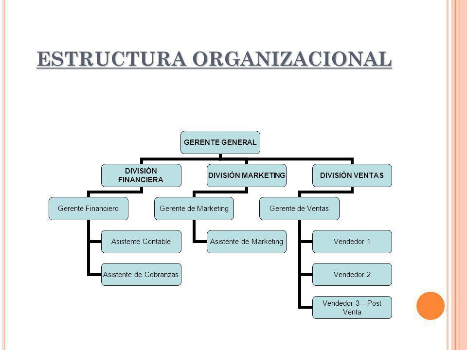 ESTRUCTURA ORGANIZACIONAL GERENTE GENERAL DIVISIÓN FINANCIERA Gerente Financiero Asistente Contable Asistente de Cobranzas DIVISIÓN MARKETING Gerente