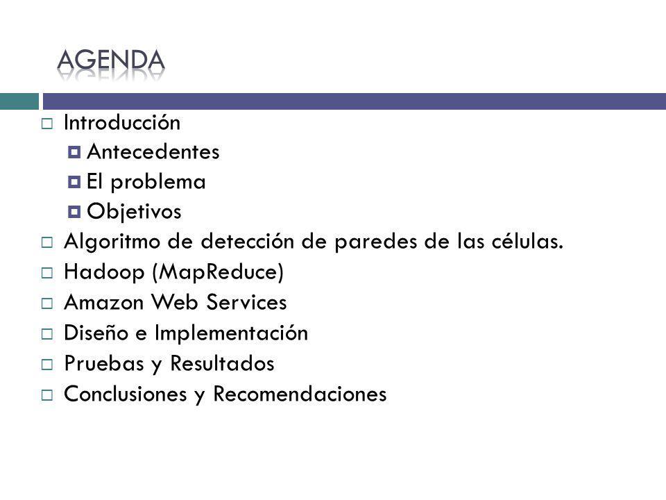 Introducción Antecedentes El problema Objetivos Algoritmo de detección de paredes de las células. Hadoop (MapReduce) Amazon Web Services Diseño e Impl