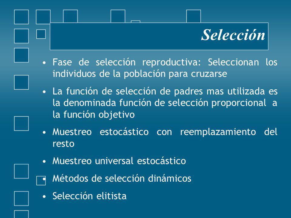 Fase de selección reproductiva: Seleccionan los individuos de la población para cruzarse La función de selección de padres mas utilizada es la denominada función de selección proporcional a la función objetivo Muestreo estocástico con reemplazamiento del resto Muestreo universal estocástico Métodos de selección dinámicos Selección elitista Selección