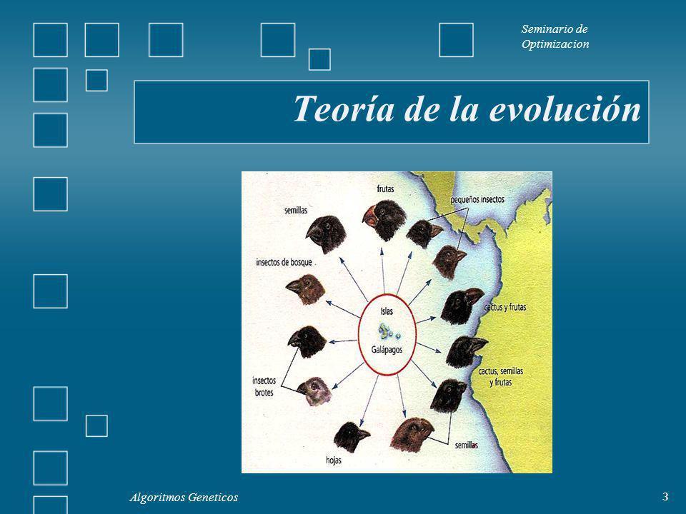 Seminario de Optimizacion Algoritmos Geneticos 3 Teoría de la evolución