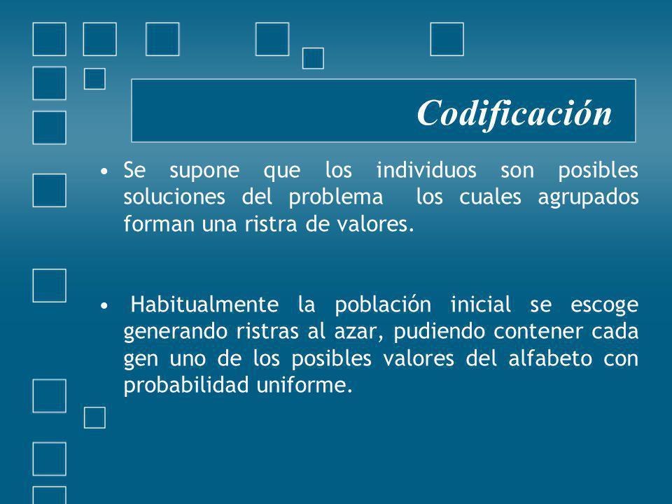 Se supone que los individuos son posibles soluciones del problema los cuales agrupados forman una ristra de valores.