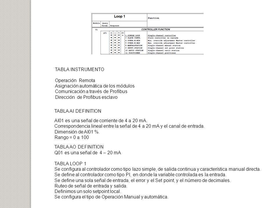TABLA INSTRUMENTO Operación Remota Asignación automática de los módulos Comunicación a través de Profibus Dirección de Profibus esclavo TABLA AI DEFIN