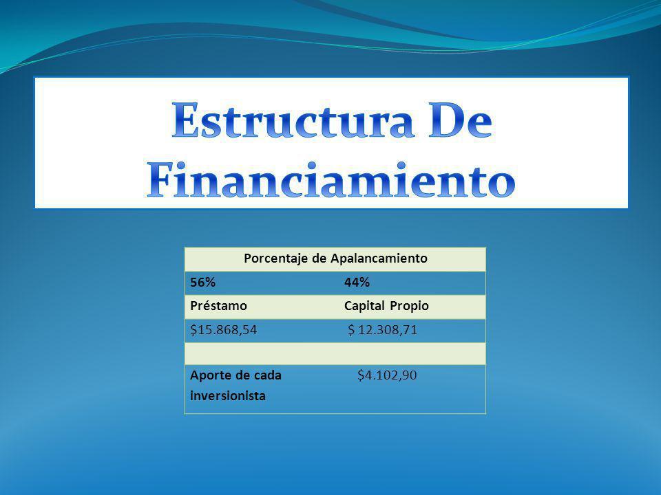 Porcentaje de Apalancamiento 56%44% PréstamoCapital Propio $15.868,54 $ 12.308,71 Aporte de cada inversionista $4.102,90