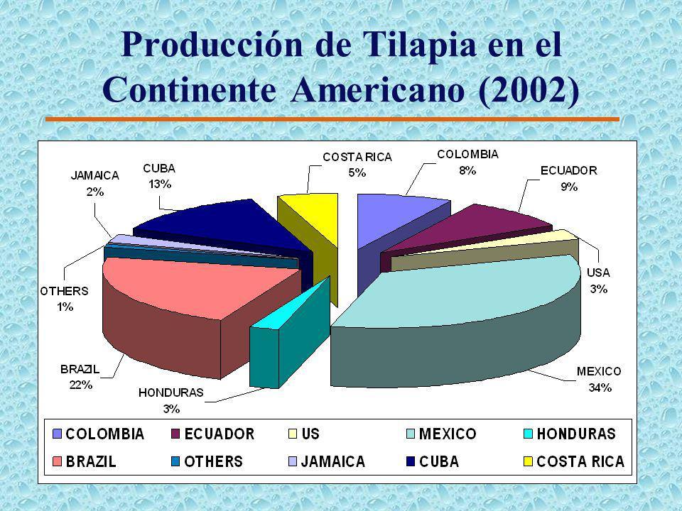 Producción Mundial de Tilapia (2002)