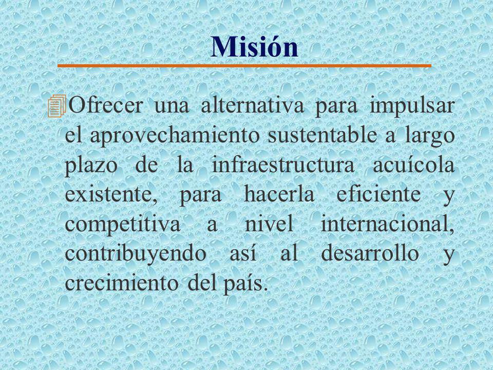 Misión 4Ofrecer una alternativa para impulsar el aprovechamiento sustentable a largo plazo de la infraestructura acuícola existente, para hacerla eficiente y competitiva a nivel internacional, contribuyendo así al desarrollo y crecimiento del país.