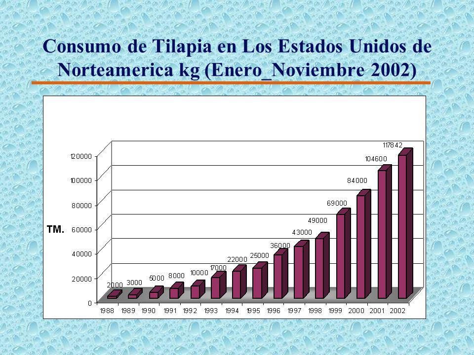 Importación de filetes frescos a Estados Unidos de América (2002)