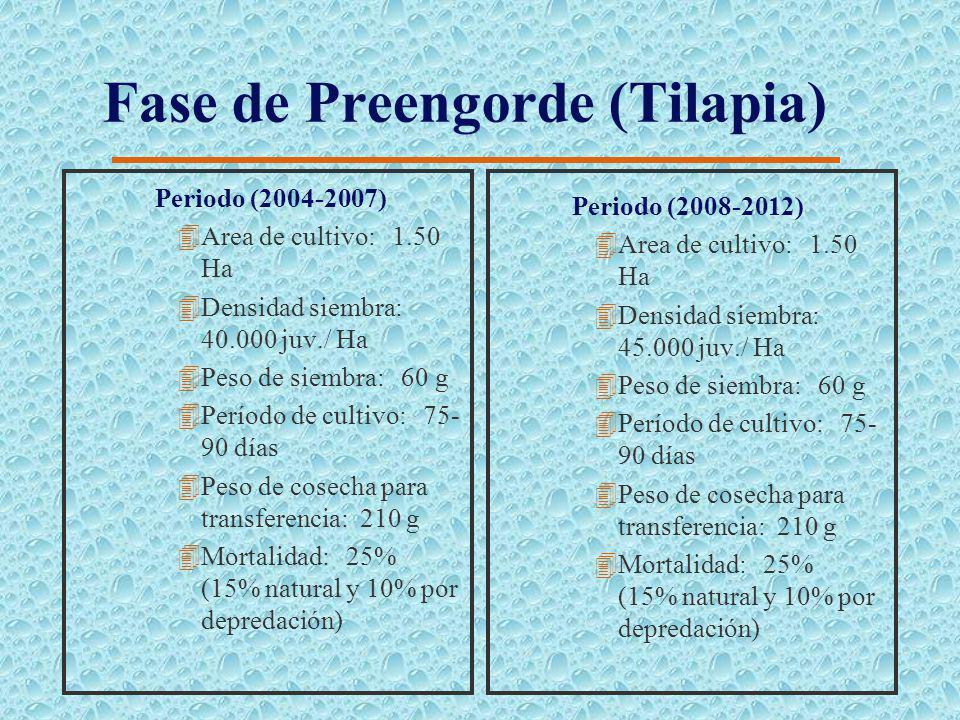 Áreas de Producción 4Área Total de Espejo de Agua: 225.0 Ha 4Estructura del Preengorde: 3 Modulos con 6 unidades de 1.5 Ha cada uno (27.0 Ha) 4Estruct