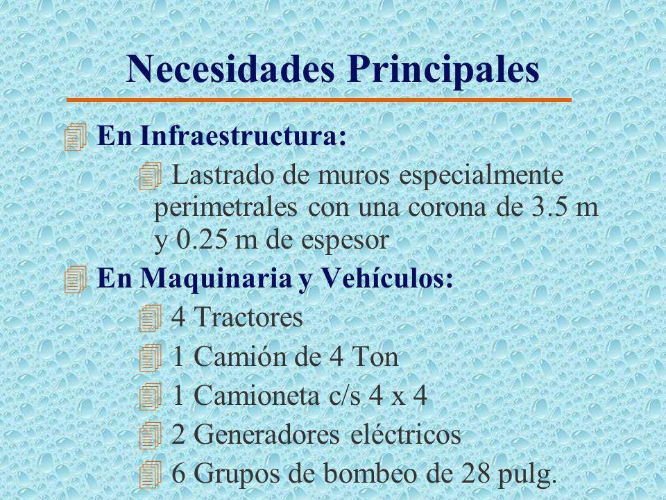 Fase de Engorde (Camarón) Periodo (2004-2007) 4Área de cultivo: 11.00 Ha 4 Densidad de siembra: 10 larvas/ m2 4 Fecha de siembra: de 2 a 4 días despué