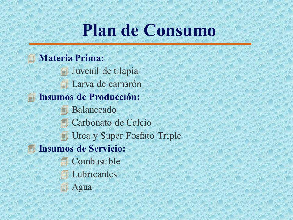 Plan de Producción 4Siembra de Tilapia en Preengorde: 4Un módulo por mes durante 6 meses seguido de un mes de secado. 4 Transferencia de Tilapia al En