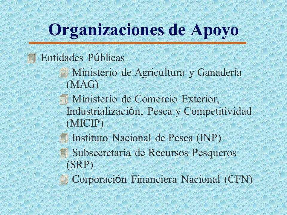 Organizaciones de Apoyo 4 Proveedores 4 Productores de alevines y juveniles de Tilapia 4 Las fabricas de alimento balanceado 4 Laboratorio de larvas d
