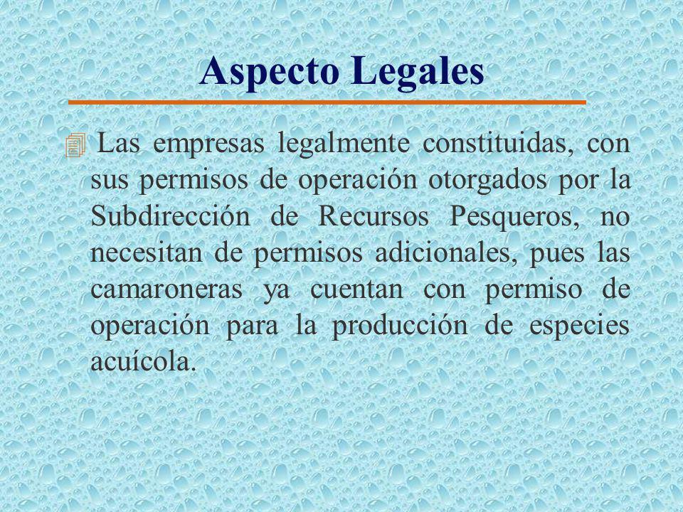 Organizaciones de Apoyo 4 Instituciones sin Fines de Lucro. 4 Cámara Nacional de Acuacultura (CNA) 4 Corporación de Promoción de Exportaciones e Inver