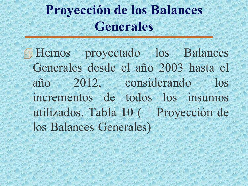 Proyección de Pérdidas y Ganancias 4 Hemos proyectado los estados de Pérdidas y Ganancias desde el año 2003 hasta el año 2012, considerando los increm
