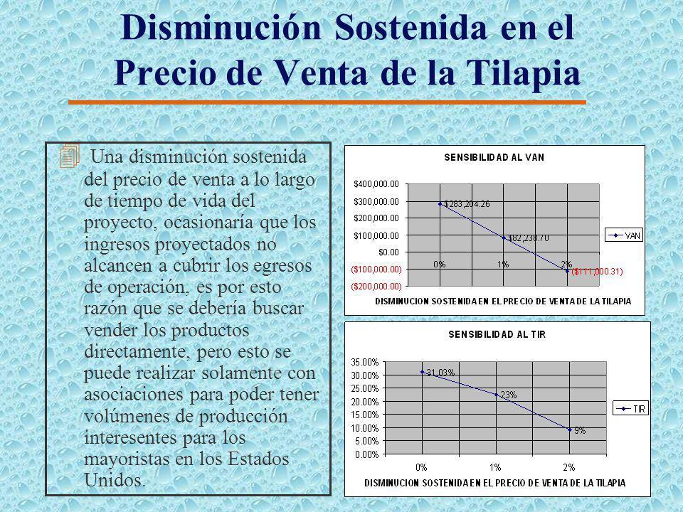 Incremento Sostenido en el Precio del Millar de Juveniles de Tilapia 4 Un incremento sostenido en el precio del millar de juveniles de tilapia, ocasio