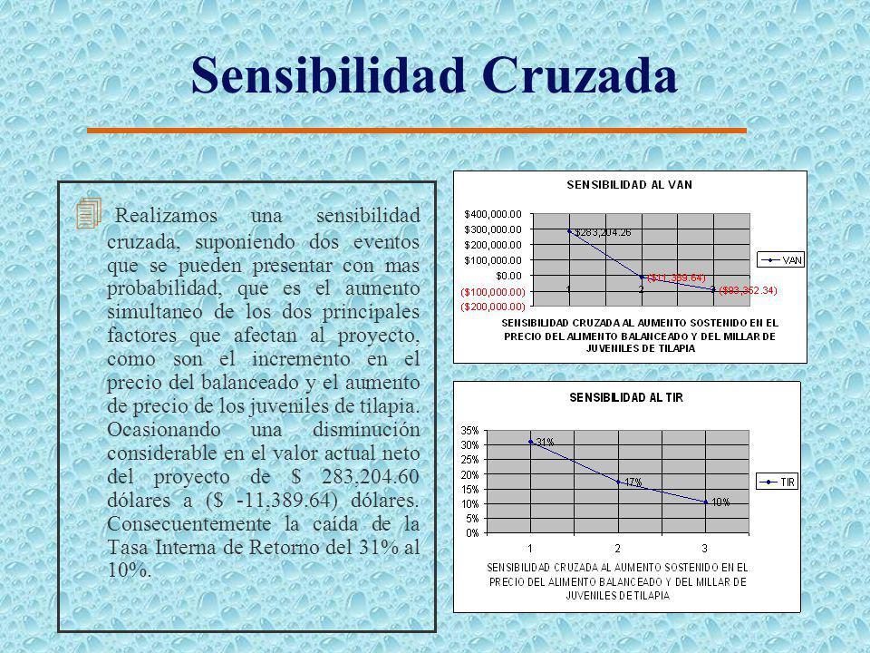 Disminución Sostenida en el Precio de Venta de la Tilapia 4 Una disminución sostenida del precio de venta a lo largo de tiempo de vida del proyecto, o