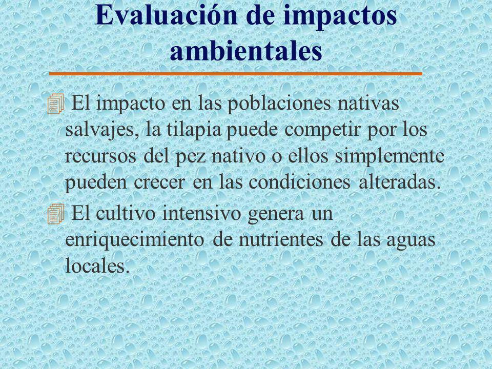 Evaluación Socio-Económica 4 Contribuir a formar la oferta de alimentos: Una demanda creciente ha transcendido la función rural de oferta de alimentos