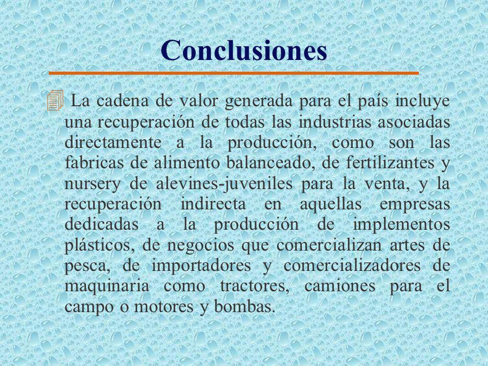 Conclusiones 4 Los productores pequeños no podrán adoptar el policultivo, debido a la magnitud de los costos fijos de producción. 4 Los productores qu