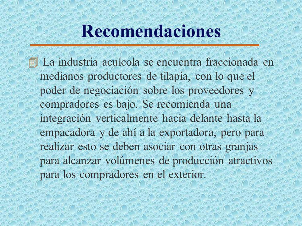 Recomendaciones 4 Es necesario la apertura de nuevos mercados a través de instituciones como Corpei, para de esta manera poder disminuir el riesgo de