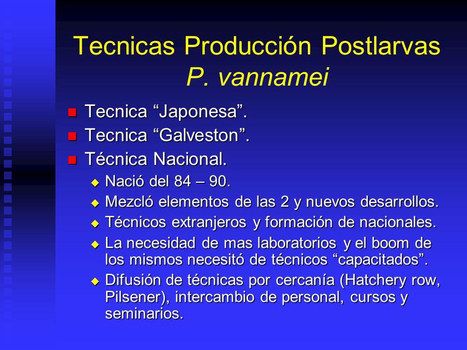 Obtención De Semilla Semilla Silvestre: Semilla Silvestre: Hasta 1990 principal fuente de semilla. Hasta 1990 principal fuente de semilla. Hasta 1989
